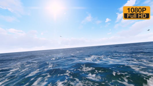 Thumbnail for Flying Birds on Ocean
