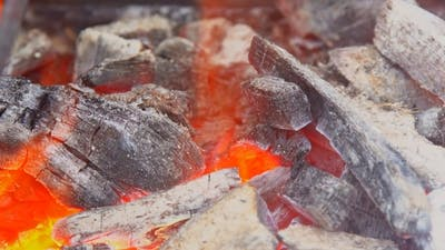 of Camp Fire Flames and Fire