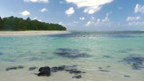 Forested Coastline and Blue Lagoon, Mauritius