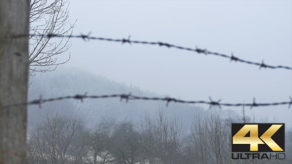 Thumbnail for Barbed Wire on Grey Sky