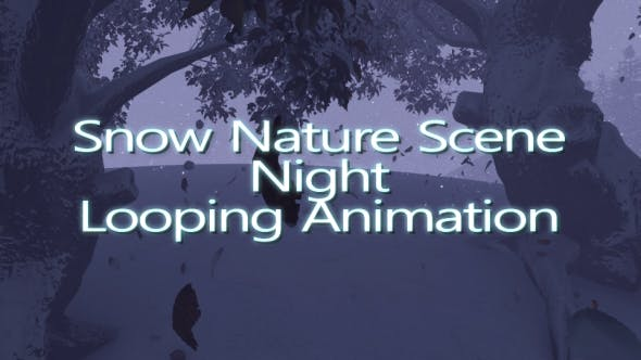 Thumbnail for Snow Nature Scene Night