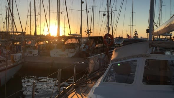 Thumbnail for Silhouettes of Sailboats Docked in Port in Dusk