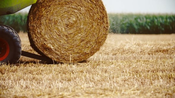 Thumbnail for Tractor Releases a Hay Bale, Straw, Agriculture Background