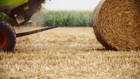Thumbnail for Tractor Releases a Hay Bale, Straw. Agriculture Background