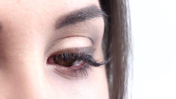 Thumbnail for One Hazel Female Eye Blinks