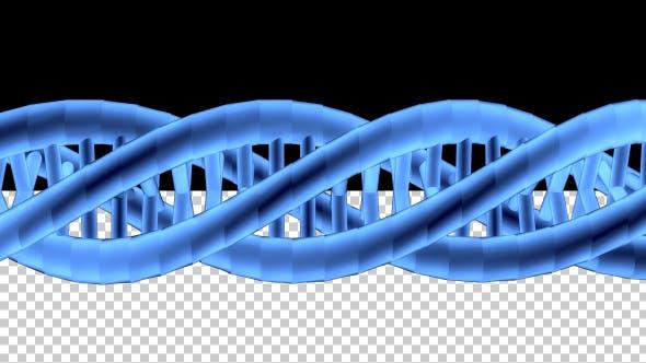 Thumbnail for DNA 3D Outline