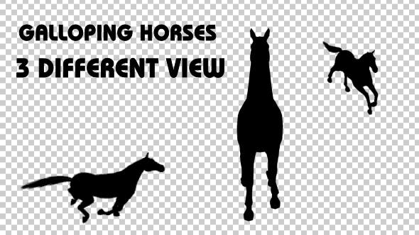 Thumbnail for Horse Galloping Silhouettes - 3 Different View
