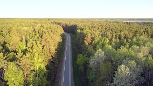 Thumbnail for Aerial View Road with Driving Cars Among Pine Forest