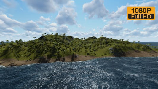 Thumbnail for Flying Birds on Ocean Island