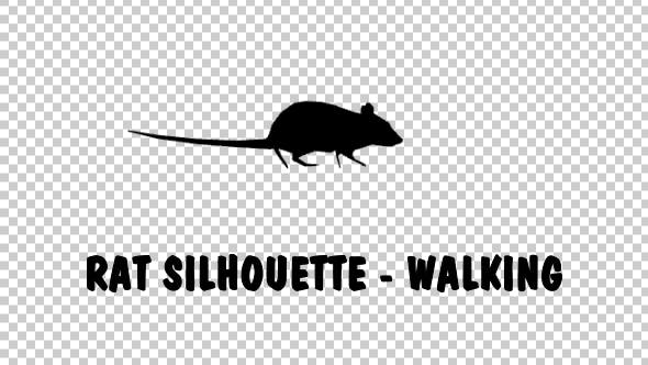 Cover Image for Rat Silhouette - Walking