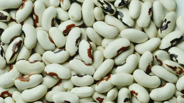 Cover Image for Background From White Beans