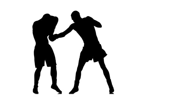 Thumbnail for Intensive and Intense Fight Between Two Boxers