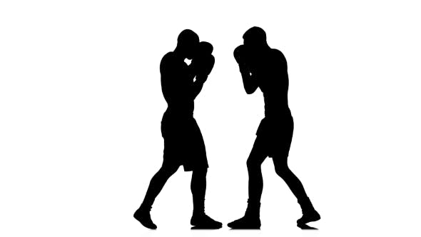 Thumbnail for Right and Left Hook in the Training of Two Boxers