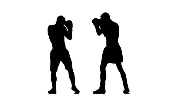Thumbnail for Two Kickboxer Sparring. Silhouette of Sportsmen Training