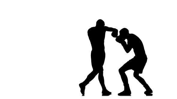Thumbnail for Silhouette of Sportsmen Training. Two Boxer Sparring