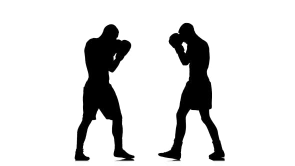 Cover Image for Kickboxers in Black Silhouette Fulfill Knee Kick To the Body
