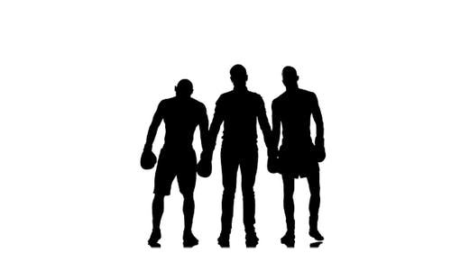 Boxing Referee Declares a Draw in a Fight. Silhouette