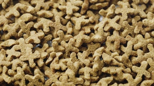 Dry Food for Cats and Other Pets