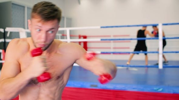 Thumbnail for Boxer Training with Dumbbells.
