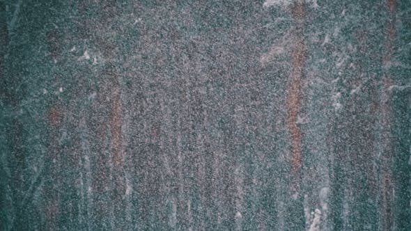 Thumbnail for Snowfall in Winter Pine Forest with Snowy Christmas Trees.