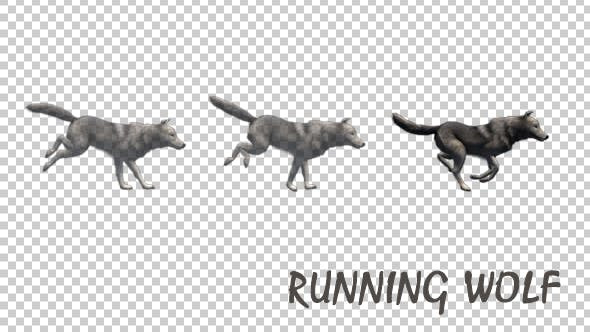 Thumbnail for Running Wolf
