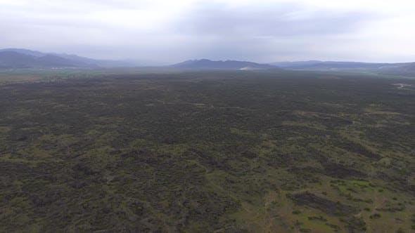 Thumbnail for Basalt Plain