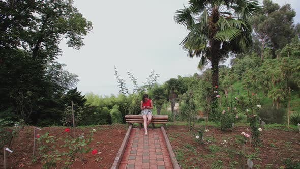 Cover Image for Girl with Smartphone Sitting on Bench on Top of Hill in Tropical Park, Palm Trees, Flower Plantation