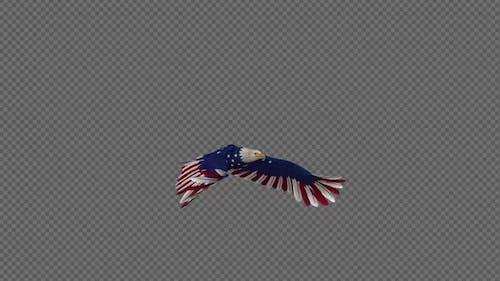 American Eagle - USA Flag - Flying Loop - Side Angle 4K