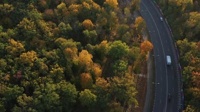 Goods Transported By Truck. Transport Logistics and Freight. Epic Aerial Flight Over Autumn Forest