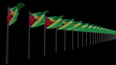 Row Of Guyana Flags With Alpha 2K