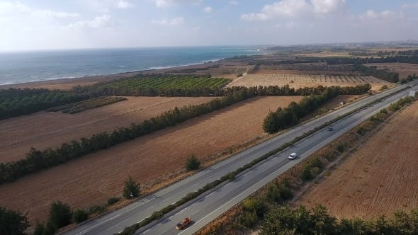 Thumbnail for The Scenery of Orange Plantations, Road and Ocean on the Horizon