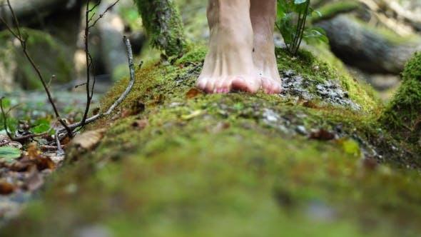 She Goes Barefoot on the Green Moss. Beautiful Slim Legs