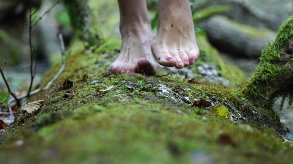Thumbnail for She Goes Barefoot on the Green Moss. Beautiful Slim Legs