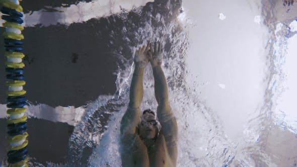 Thumbnail for The Sportsman Training To Swimming in the Clear Water of Swimming Pool