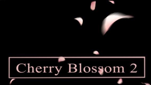 Thumbnail for Cherry Blossom2