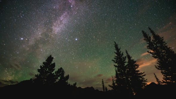 Thumbnail for Milky Way Behind Trees