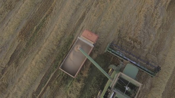 Thumbnail for Aerial View Combine Unloads Grain in the Truck.