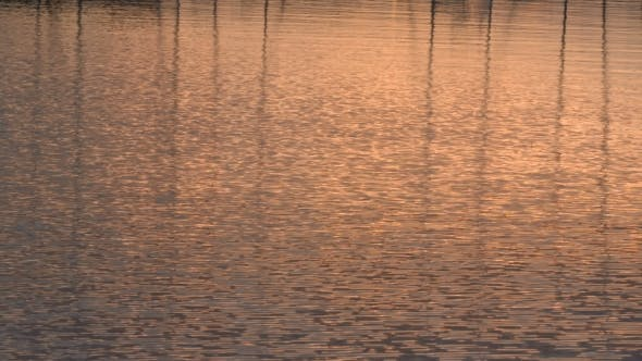 Thumbnail for Sun Reflections Off Lake Water