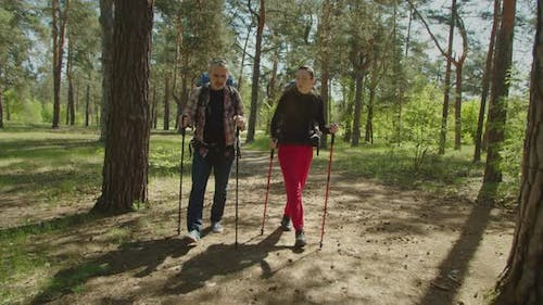 Middle Aged Backpacker Couple with Trekking Poles Hiking in Wood
