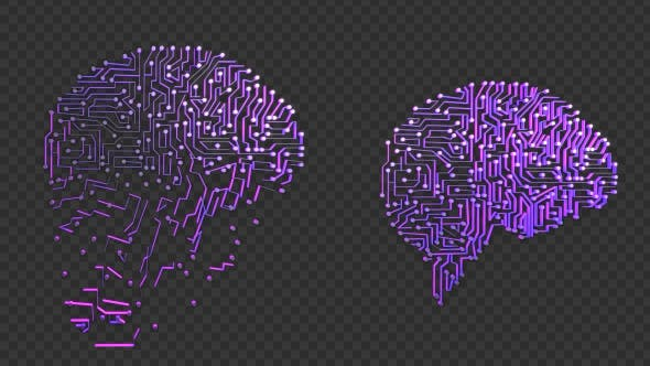 Brain Circuits Transforming