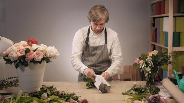Thumbnail for Male Florist Hands , Cuts Rose for Bouquet in Flower Shop. Man Assistant or Owner in Floral Design