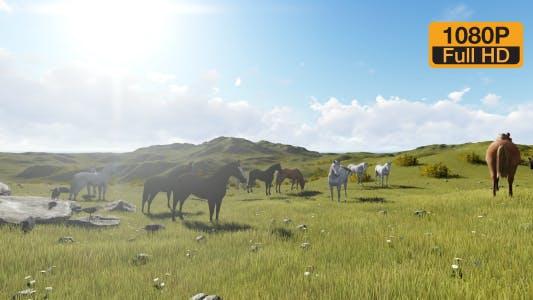 Horseshoe horses