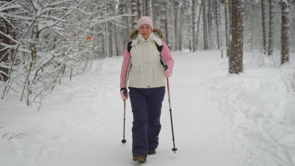 Thumbnail for Active Woman in Warm Clothes Doing Nordic Walking in the Forest. Happy Female Sportsman Stepping