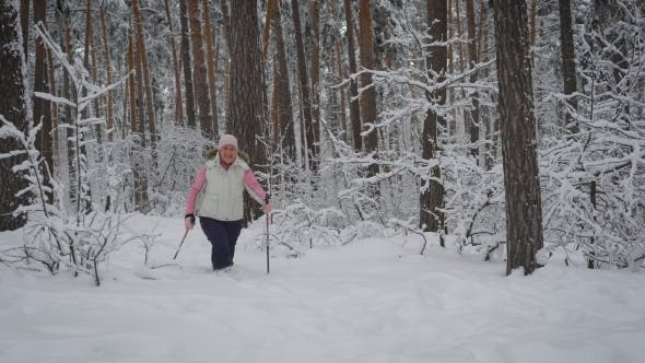Thumbnail for Elderly Woman Dressed in Warm Sportswear Is Engaged in Nordic Walking in the Snowy Woods in the