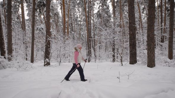 Thumbnail for Side View of Energetic Woman Doing Active Nordic Walking Exercising in the Forest. Lady with Ski