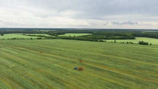 Thumbnail for A Drone Footage of a Harvesting Machine on a Large Field