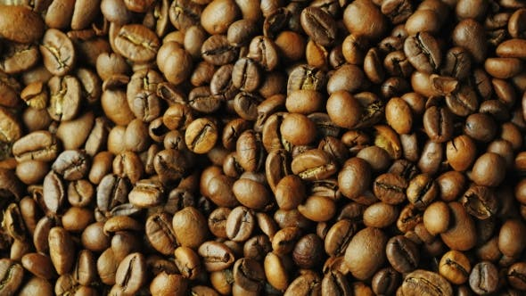 Cover Image for Grains of Roasted Coffee Varieties Arabica and Robusta Are Rotated