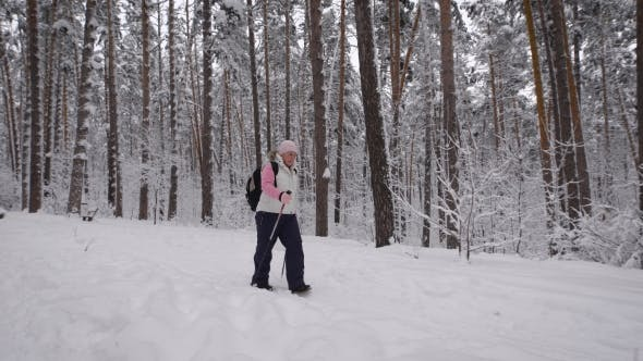 Thumbnail for The Woman Aged with a Black Backpack on Shoulders Goes   Footpath of the Winter Forest. The Elderly
