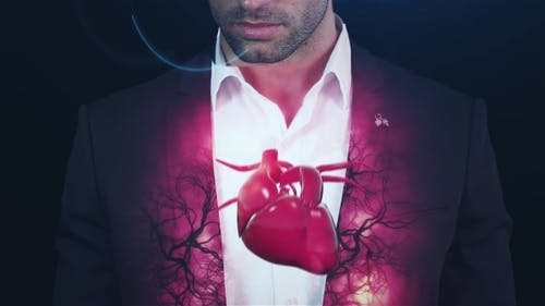 Hologram Vessels and the Heart, Veins, To the Brutal Man