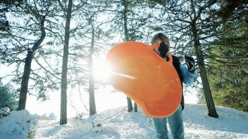Portrait of a Boy with a Sled in the Hands of Winter Activities for Children,